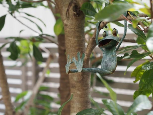 kitanagoya_y7カエルも遊ぶ庭(トップページ写真)