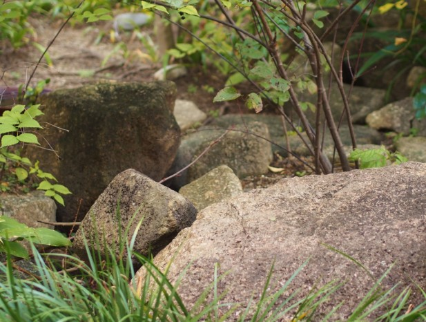 atuta_m6奥行きを感じさせる流れの石組