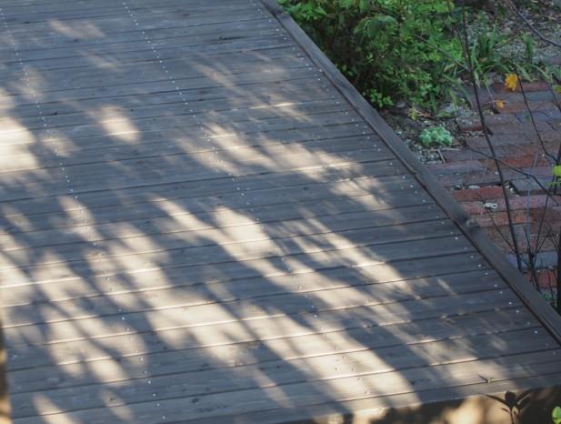 tenpaku_m8デッキに映る木のシルエット
