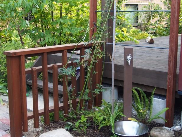 tenpaku_m10水洗周りはウリンと鉄筋で作ったモッコウバラの棚をバックに