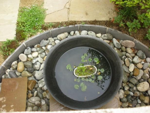 kitanagoya_y8フォーカルポイントとなる水鉢の景色