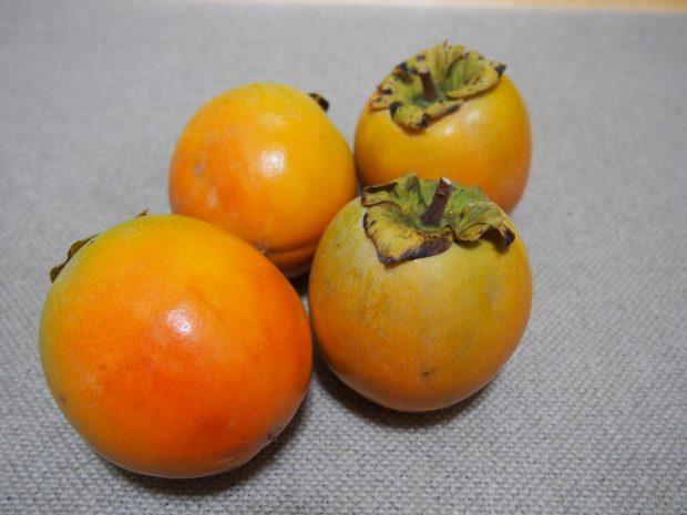 からすみ 柿