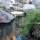 池と流れのある庭2の写真