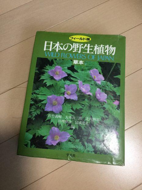 日本の野生植物 草本